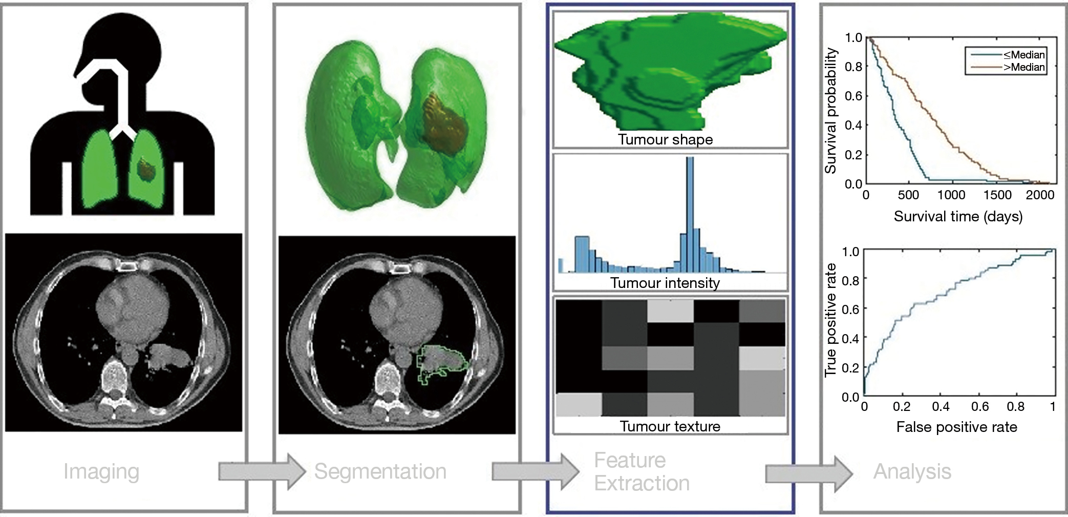 The role of deep learning and radiomic feature extraction in cancer